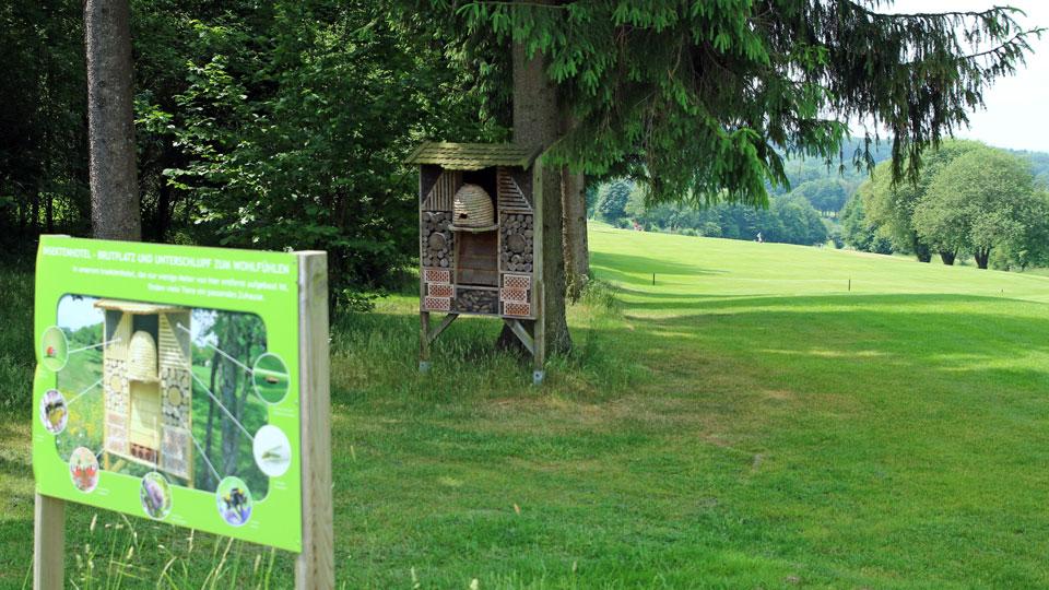 Bild: Golfclub Wiesensee (DGV/Stebl)