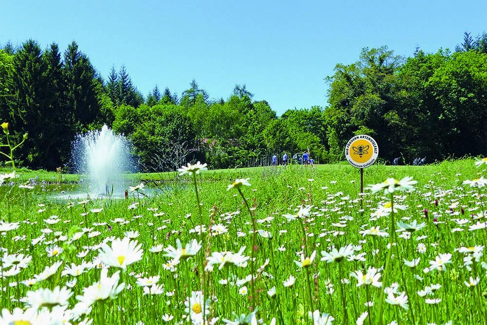 Lebensraum Golfplatz (Bild: DGV)