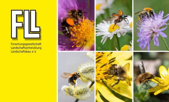 Fachbericht Bienenweide - ein FLL-Bericht